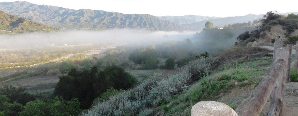 Ojai Valley Trail Fog - Header